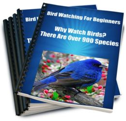 Bird Watching For Beginners Why Watch Birds? There Are Over 900 Species