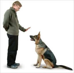 Dog Obedience: The Ultimate Beginners Guide To Training Your Dog or Puppy