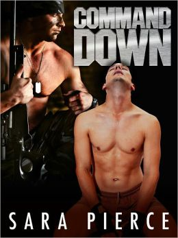 Command Down: Gay Military Erotica