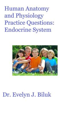Human Anatomy and Physiology Practice Questions: Endocrine System