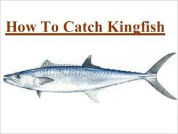 Fishing - Knowledge and Know How to Catch Kingfish