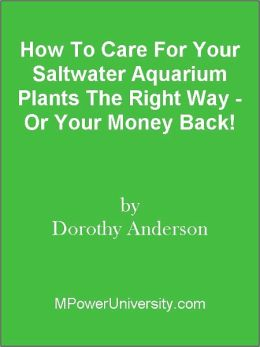 How To Care For Your Saltwater Aquarium Plants The Right Way - Or Your Money Back!