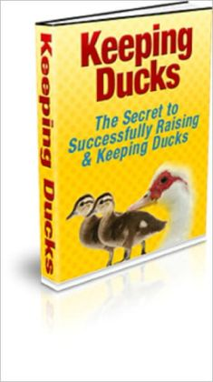 Keeping Ducks (The Secret to Successfully Raising & Keeping Ducks)