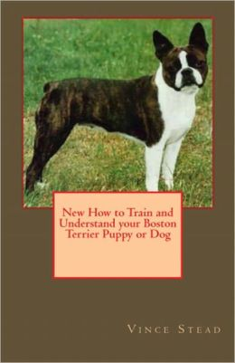 New How to Train and Understand your Boston Terrier Puppy or Dog
