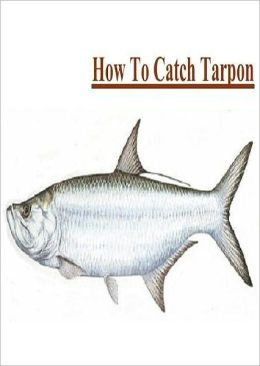 Fishing - Knowledge and Know How to Catch Tarpon
