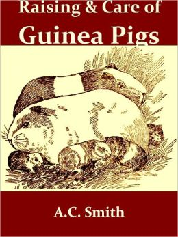 The Raising and Care of Guinea Pigs: A Complete Guide to the Breeding, Feeding, Housing, Exhibiting and Marketing of Cavies [Illustrated]