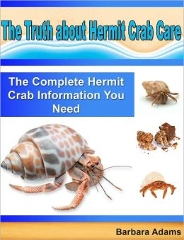 The Truth about Hermit Crab Care: The Complete Hermit Crab Information You Need
