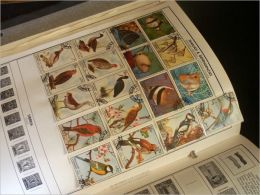 Beginners Guide to Stamp Collecting: All the Things You Must Know Before You Start Philately