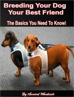 Breeding Your Dog: The Basics You Need To Know!