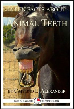 14 Fun Facts About Animal Teeth: A 15-Minute book