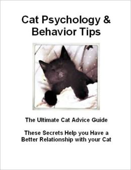 Cat Psychology & Behavior Tips: These Secrets Help you Have a Better Relationship with your Cat