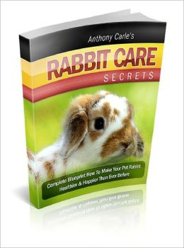 Rabbit Care How To Take Care Of Your Lovely Rabbit - Without Making Silly Mistakes!