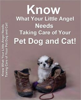 Know What Your Little Angel Needs Taking Care of Your Pet Dog and Cat!