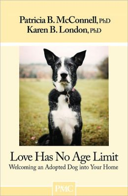Love Has No Age Limit; Welcoming an Adopted Dog into Your Home