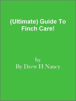 (Ultimate) Guide To Finch Care!
