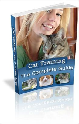 Cat Training: The Complete Guide