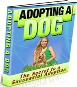 Study Guide eBook - Adopting A Dog - Learn Best Tips to Avoid Disappointment..