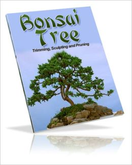 For Your Enjoyment And Fun - Bonsai Trees - Growing, Trimming, Sculpting & Pruning