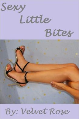 Sexy Little Bites: Short Stories to Excite