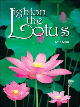 Light on the Lotus