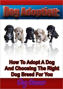 Dog Adoption: How To Adopt A Dog And Choosing The Right Dog Breed For You