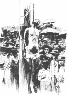 Southern Horror Lynch Law In All Its Phases Plus The Red Record Tabulated Statistics and Alleged Causes of Lynching in the United States