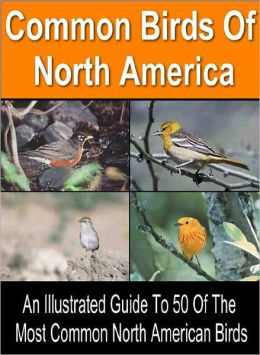 Birding For Everyone: All The Information You Need To Start A Fascinating New Hobby – Series #1: Common Birds of North America: An Illustrated Guide to 50 Of the Most Common North American Birds