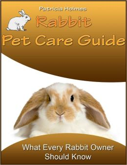 Rabbit Pet Care Guide: What Every Rabbit Owner Should Know