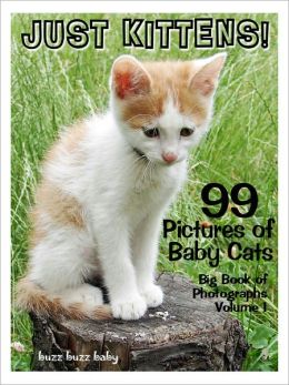 99 Pictures: Just Kitten Photos! Big Book of Baby Cat Photographs Vol. 1