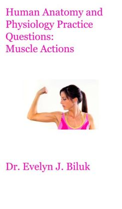 Human Anatomy and Physiology Practice Questions: Muscle Actions