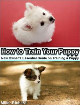 How to Train Your Puppy: New Owner's Essential Guide on Training a Puppy