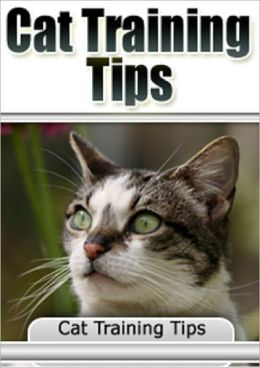 Cat Training Tips