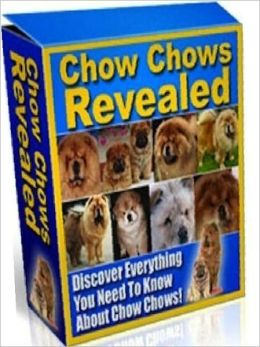 Chow Chows Reveale Study Guide - Can you get along with a Chow Chow? d