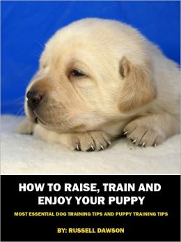 How To Raise, Train and Enjoy Your Puppy: Most Essential Dog Training Tips and Puppy Training Tips