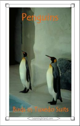 Penguins: Birds in Tuxedo Suits