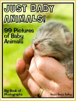 99 Pictures: Just Baby Animal Photos! Big Book of Baby Animal Photographs Vol. 1