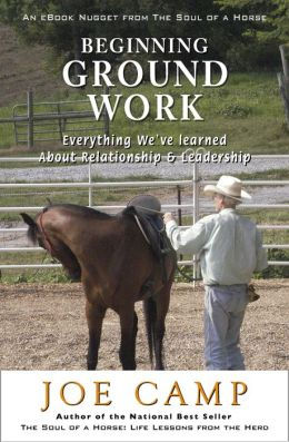 BEGINNING GROUND WORK: Everything We've Learned about Relationship & Leadership: Another eBook Nugget from The Soul of a Horse
