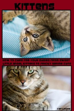 Kittens: How to Care For Your Babies From Sweet Little Angel Kittens to Finicky Senior Cats