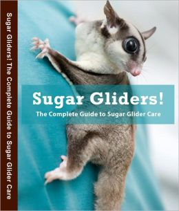 The Guide to Owning a Sugar Glider Professional Edition
