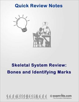 Bones and Identifying Marks (Skeletal System Review)