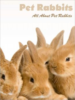 Rabbits: All About Rabbits