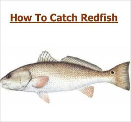 Fishing - Knowledge and Know How to Catch Redfish