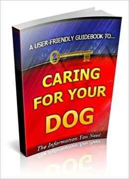 Caring For Your Lovely Dog