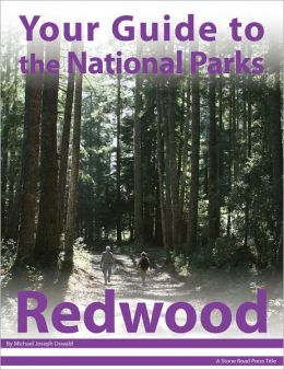 Your Guide to Redwood National Park