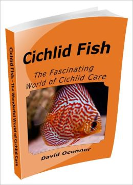 Cichlid Fish - The Fascinating World of Cichlid Care