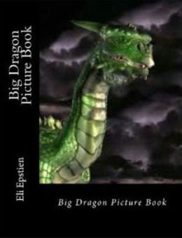 Big Dragon Picture Book
