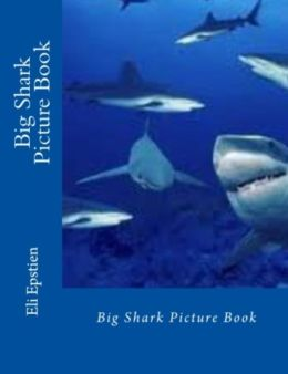 Big Shark Picture Book