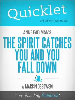 the spirit catches you and you fall down book essay