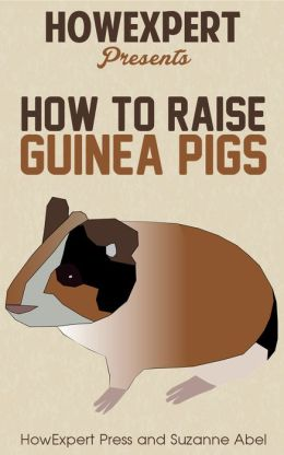 How To Raise Guinea Pigs - Your Step-By-Step-Guide to Raising Guinea Pigs