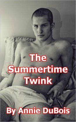 The Summertime Twink (Gay Erotica)